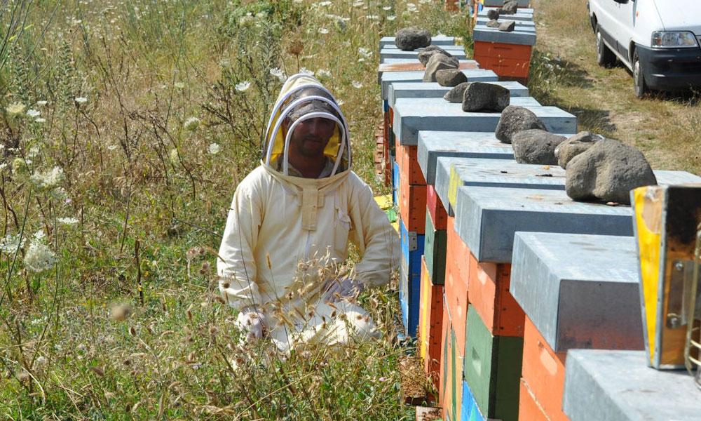 Be Beekeeper