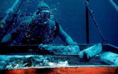 Fantastiche Immersioni: Team Building Subacqueo e Formazione