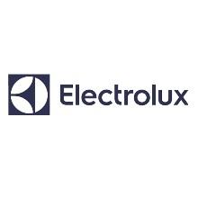 Made Team ha organizzato attività di team building aziendale per Electrolux
