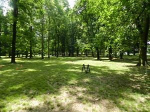 Il Parco dell'Idroscalo di Milano per svolgere un Orienteering Team Building