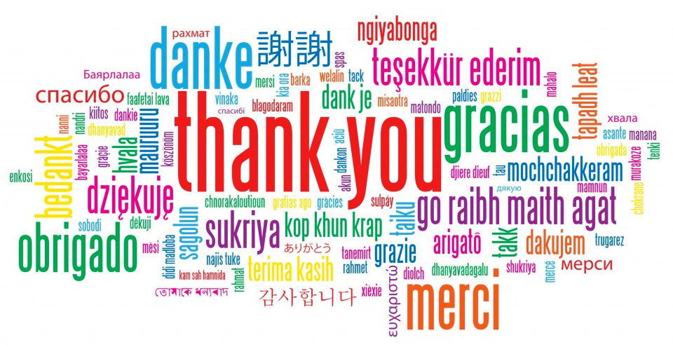 Grazie da Made In Team - team building, formazione ed eventi aziendali